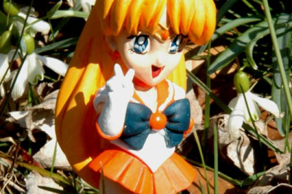 sailor-venus-sd1AB5C8807-4BF8-DA31-9FFE-8BB27BEE04E5.jpg